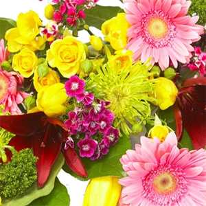Bright Arrangements Colours