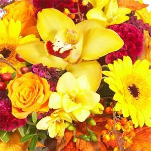 Fall Arrangments Colours