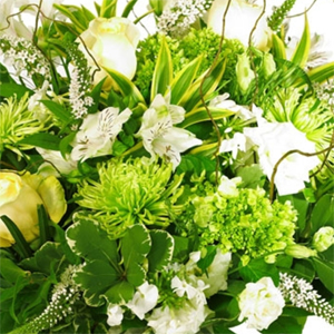 Green-White Arrangements Colours